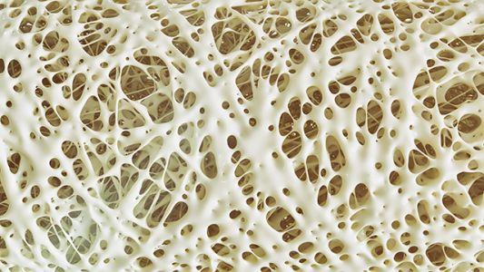 Osteoporosis myths DEBUNKED: Truths about bone health
