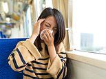 Why the next flu season may be worse than ever: Experts fear this year will leave us exposed.