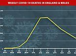 Number of Covid-19 deaths in week ending May 15 dropped to a six-week LOW