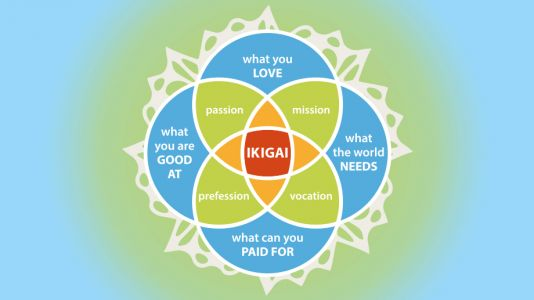 Op-Ed: Find Your Purpose in Medicine With 'Ikigai'