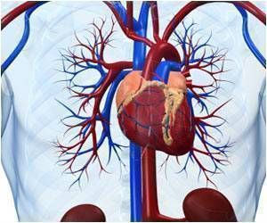 Common Heart Drugs Cause Less Heart Damage Linked to Chemotherapy