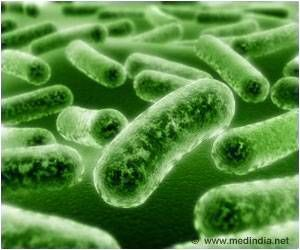 Link Between Gut Bacteria and Anti-seizure Effects of Ketogenic Diet