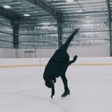 """Watch This Figure Skating Routine to """"Bury a Friend,"""" Because Words Don't Do It Justice"""