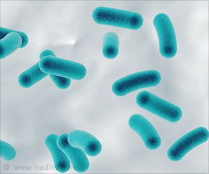 Bacteria from Soil May Help Cure Fungal Infections