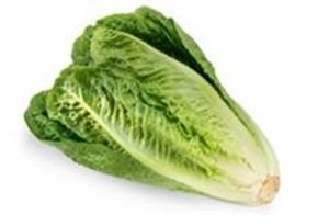 Salinas Romaine sickens 2 in Canada and 102 in the United States with E. coli