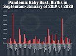 Nearly every state saw sharp declines in birth rates since pandemic began