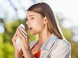 Hay fever sufferers are much less likely to develop certain cancers, study claims