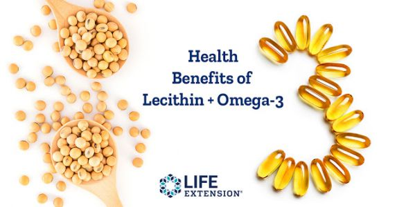 Does Lecithin Work with Omega-3 to Support Brain Health?