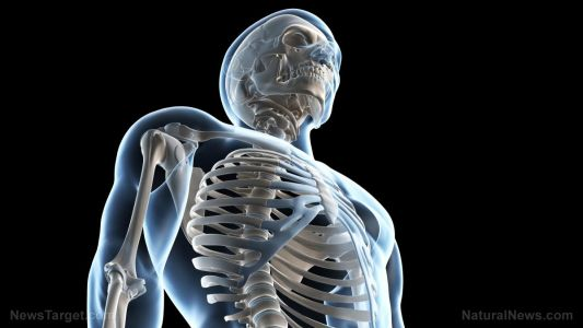 Boosting bone health with boron: How does it benefit people with osteoporosis?