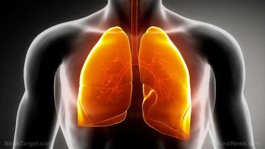 TCM formula protects the lungs after chemotherapy