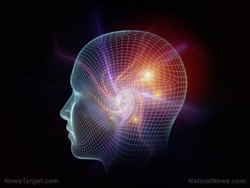 Researchers find evidence of 'hidden consciousness' days after brain injury