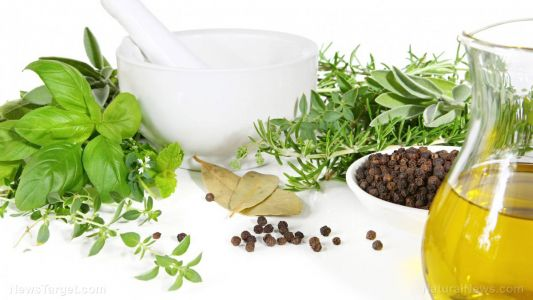 Proven home remedies: 10 Natural antibiotics you can find in your kitchen and home garden