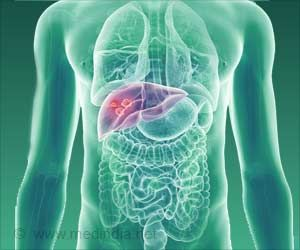 Stress Enzyme Linked to Liver Cancer Growth