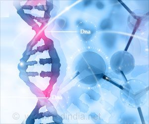 Gene-to-gene Interaction can be Understood Better With the New Statistical Method