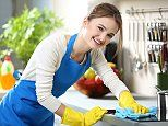 Cleaning products may be making children FAT due to chemicals 'altering bacteria in their guts'