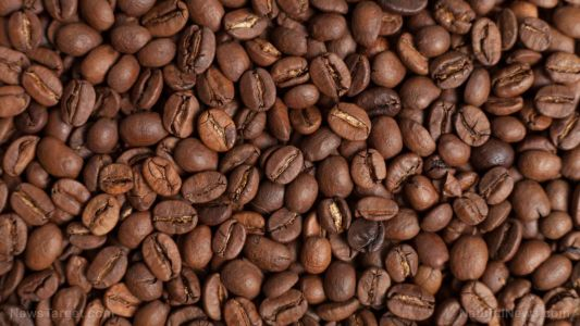Coffee supports the gall bladder and reduces liver cancer, as revealed in new meta-analysis