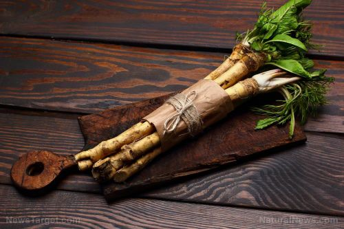 Horseradish treats a variety of health conditions, from asthma to toothache to gout pain