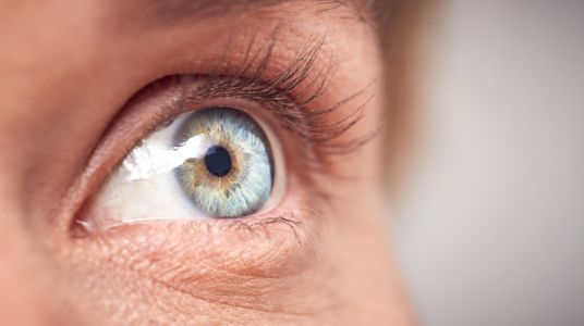 Brain-eye axis: New Zealand firms reveal potential of nootropics for eye health
