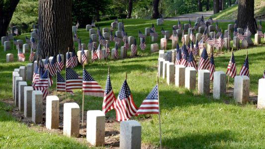 Memorial Day message from the Health Ranger