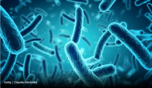Scientists discover link between gut microbe and long-term mortality