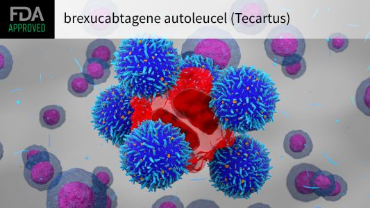 FDA OKs First CAR T-Cell Therapy for Adult ALL