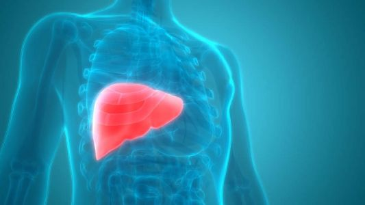 How Exercise Can Improve the Health of Your Liver