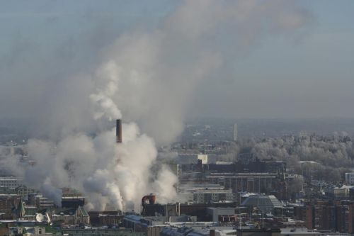 Scientists warn city dwellers to stock up on B vitamins after discovering they protect human health from air pollution