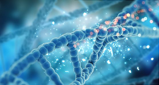 New Gene Variations for Type 2 Diabetes Found