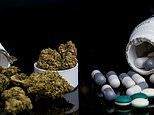 40% of medical marijuana users quit taking other prescription drugs, study finds