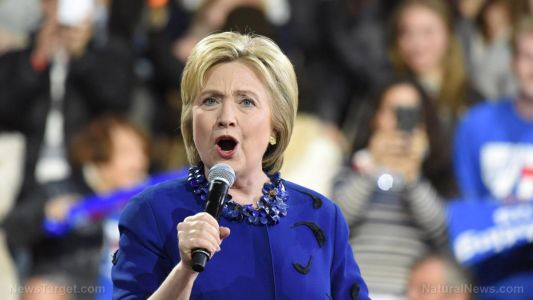 Hillary Clinton says lockdown protesters are domestic terrorists