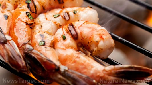 Study reveals that shrimp contain a cocktail of drugs and pesticides