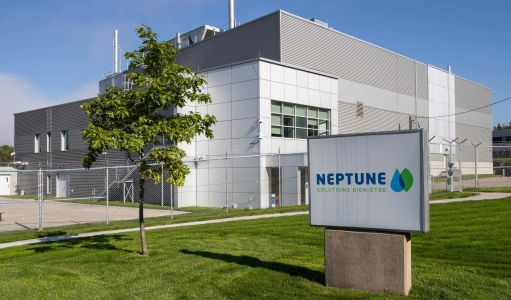 Entering US hemp/CBD market latest step in Neptune's transformation