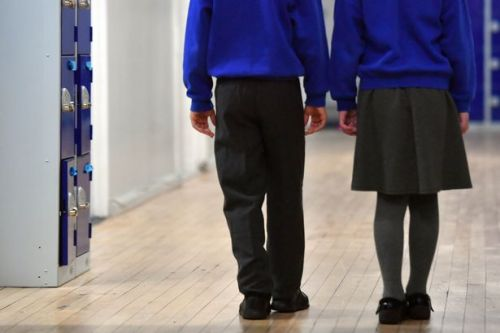 What scientists are telling the Welsh Government about reopening schools