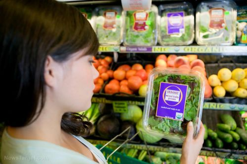 Food prices continue to rise dramatically, with no relief in sight