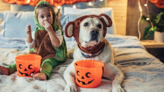5 Things To Consider Before Your Child Chooses A Halloween Costume