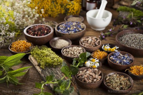 Herbal remedies for PCOS