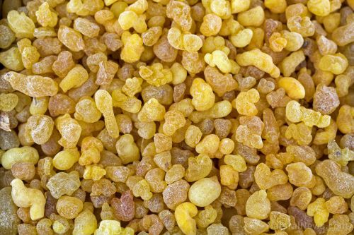 6 Reasons why boswellia is one of the most powerful herbal extracts available today