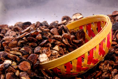 This Ayurvedic herb displays powerful cardioprotective effects in diabetics