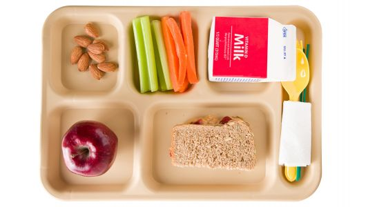Nix Nut-Free Classrooms, New Allergy Guidelines Urge