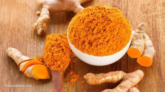 Is the golden spice a golden cure? Woman, 67, beat blood cancer after stopping traditional treatments and using TURMERIC