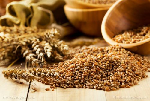 Follow a fiber-rich diet to lower your risk of non-communicable diseases, says study
