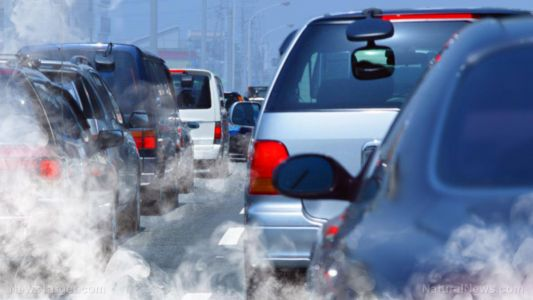New evidence PROVES that air pollution affects the placenta of developing babies