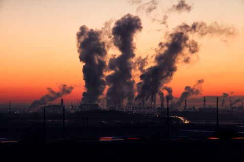 Protect yourself against the effects air pollution with these 5 micronutrients