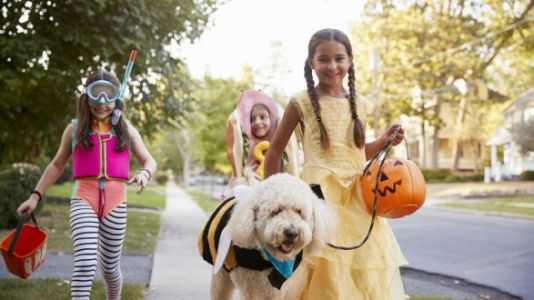 How To Give Our Kids An Old School '80s Halloween