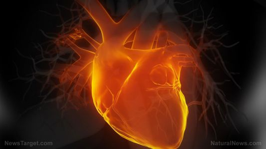 Key Women's Heart Attack Symptoms Not So Different From Men's, AI Study Finds