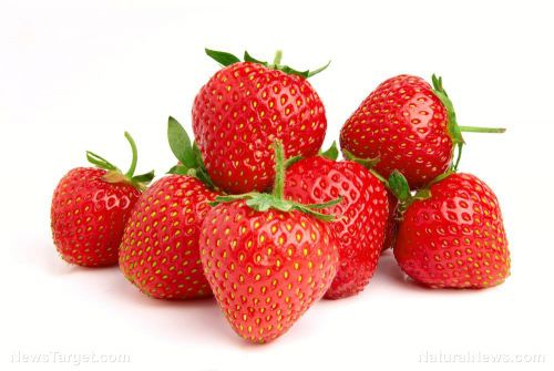 Study: Consuming more strawberries can help prevent Alzheimer's in the elderly