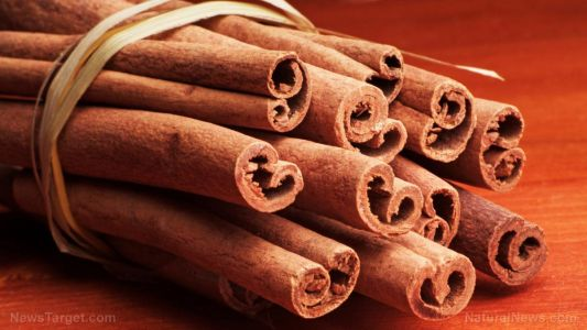 Why Chinese cinnamon should be part of your weight loss plans